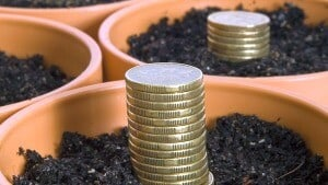 coins potted in soil signifying the wealth creation process