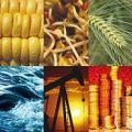 commodities asset class diversifying portfolio investment