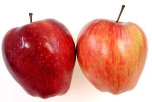 comparing-insurance-products:-apples-with-apples
